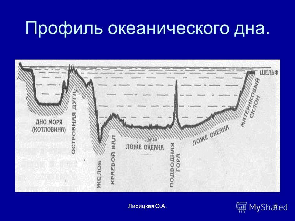 Лисицкая О.А.5 Профиль океанического дна.