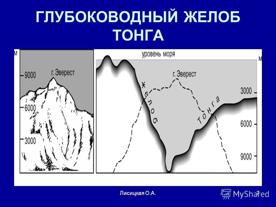 Лисицкая О.А.7 ГЛУБОКОВОДНЫЙ ЖЕЛОБ ТОНГА