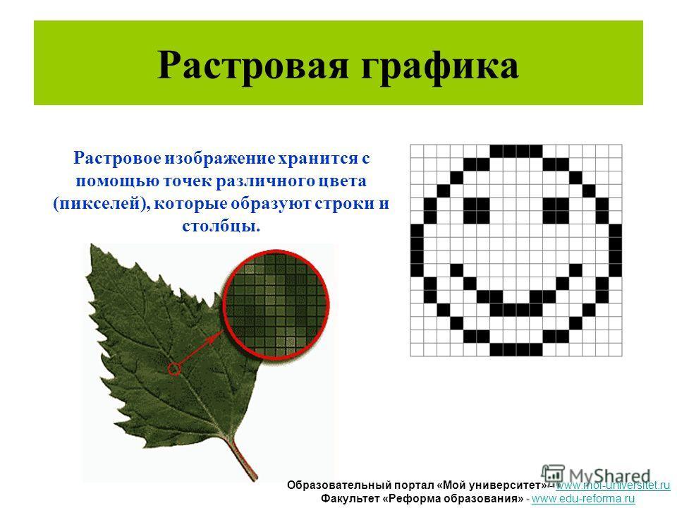 Растровая графика Растровое изображение хранится с помощью точек различного цвета (пикселей), которые образуют строки и столбцы. Образовательный портал «Мой университет» - www.moi-universitet.ruwww.moi-universitet.ru Факультет «Реформа образования» -