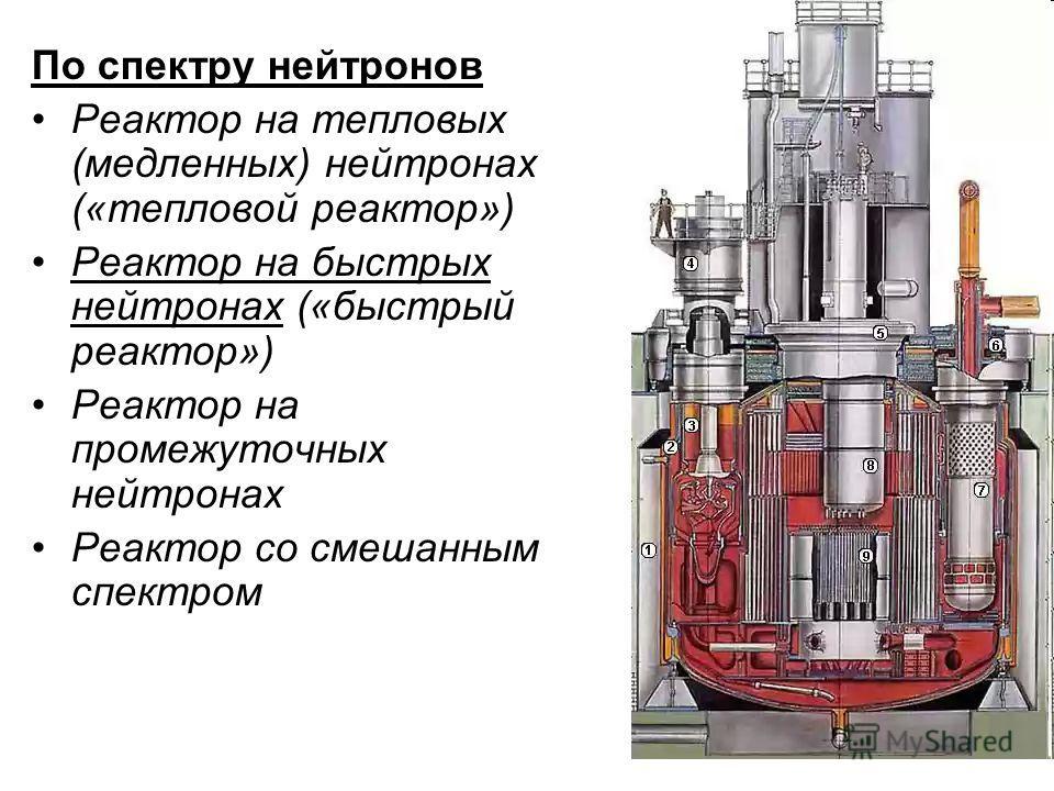 По спектру нейтронов Реактор на тепловых (медленных) нейтронах («тепловой реактор») Реактор на быстрых нейтронах («быстрый реактор») Реактор на промежуточных нейтронах Реактор со смешанным спектром