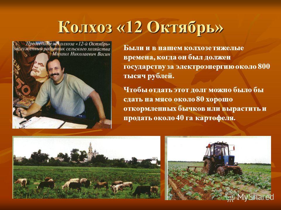 Колхоз «12 Октябрь» Были и в нашем колхозе тяжелые времена, когда он был должен государству за электроэнергию около 800 тысяч рублей. Чтобы отдать этот долг можно было бы сдать на мясо около 80 хорошо откормленных бычков или вырастить и продать около