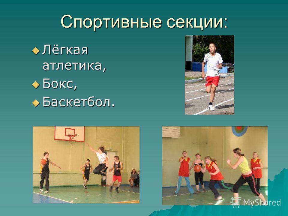 Спортивные секции: Лёгкая атлетика, Лёгкая атлетика, Бокс, Бокс, Баскетбол. Баскетбол.