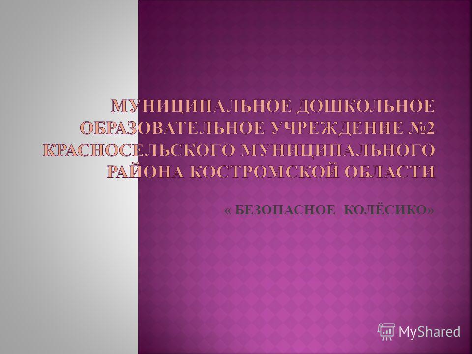 « БЕЗОПАСНОЕ КОЛЁСИКО»