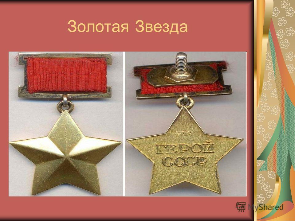 Золотая Звезда 24