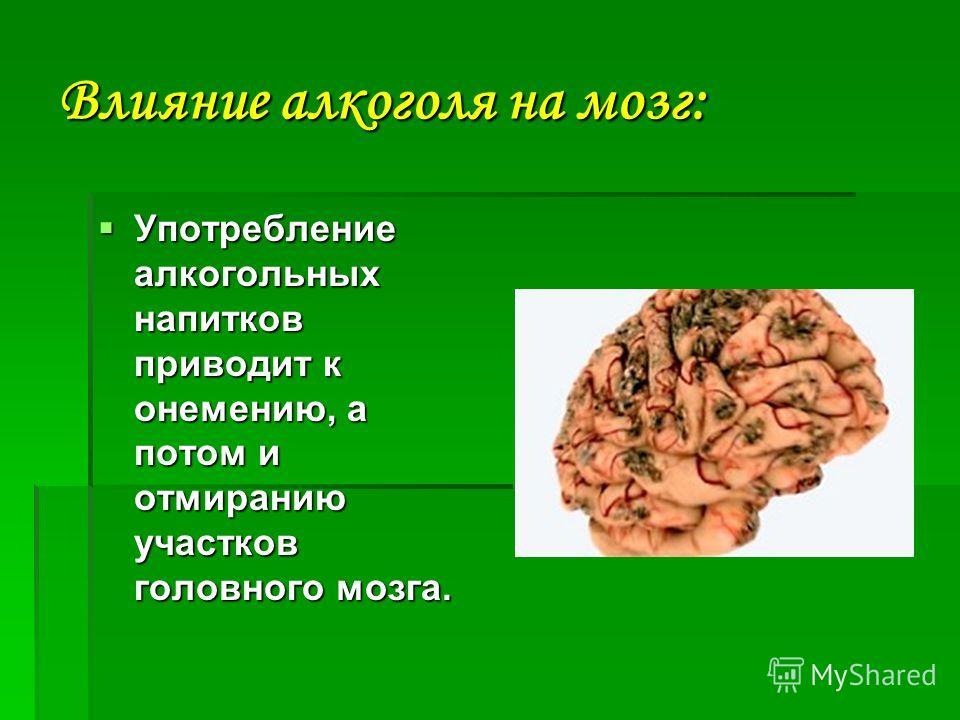Влияние алкоголя на мозг: Употребление алкогольных напитков приводит к онемению, а потом и отмиранию участков головного мозга. Употребление алкогольных напитков приводит к онемению, а потом и отмиранию участков головного мозга.