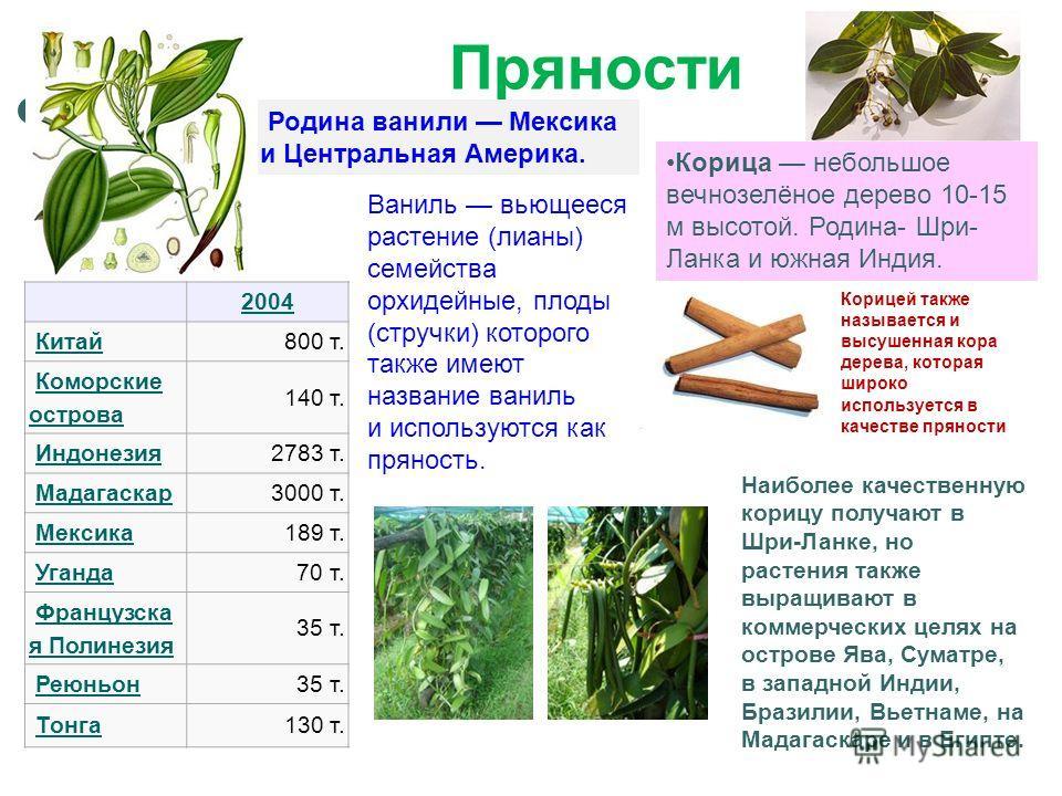 Пряности Наиболее качественную корицу получают в Шри-Ланке, но растения также выращивают в коммерческих целях на острове Ява, Суматре, в западной Индии, Бразилии, Вьетнаме, на Мадагаскаре и в Египте. Корица небольшое вечнозелёное дерево 10-15 м высот