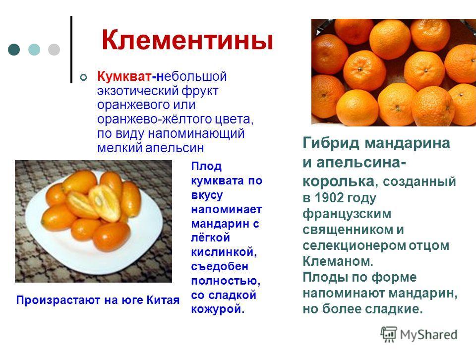 Клементины Кумкват-небольшой экзотический фрукт оранжевого или оранжево-жёлтого цвета, по виду напоминающий мелкий апельсин Гибрид мандарина и апельсина- королька, созданный в 1902 году французским священником и селекционером отцом Клеманом. Плоды по