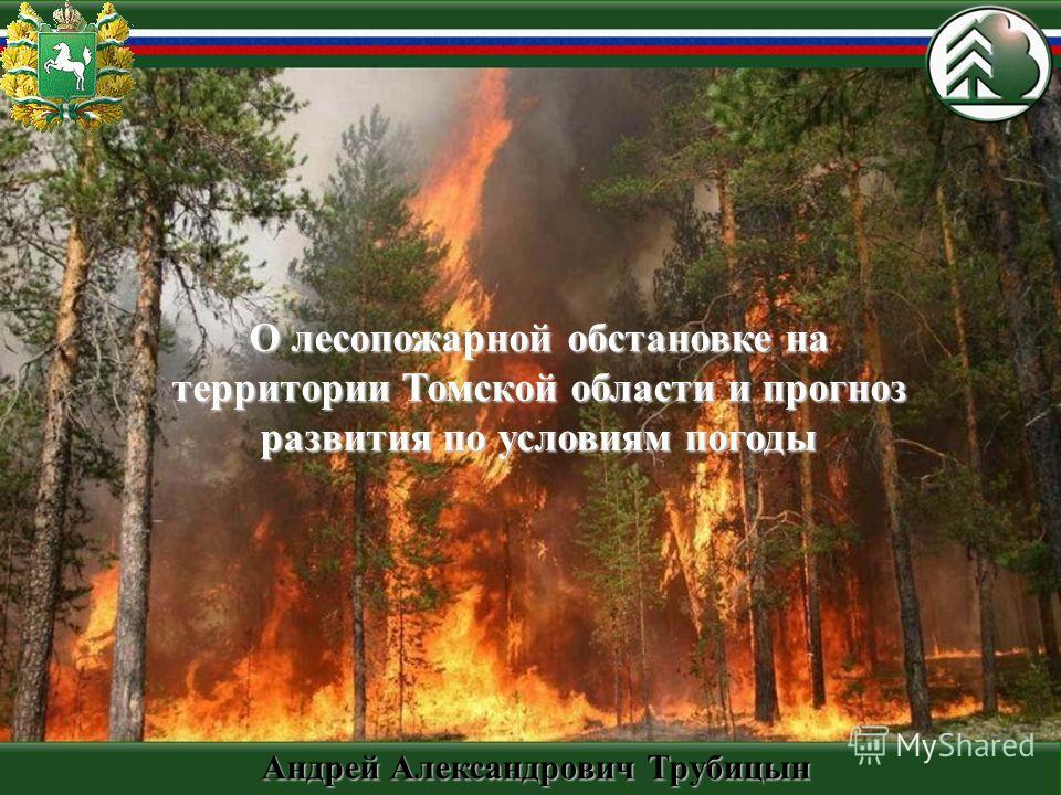 О лесопожарной обстановке на территории Томской области и прогноз развития по условиям погоды Андрей Александрович Трубицын