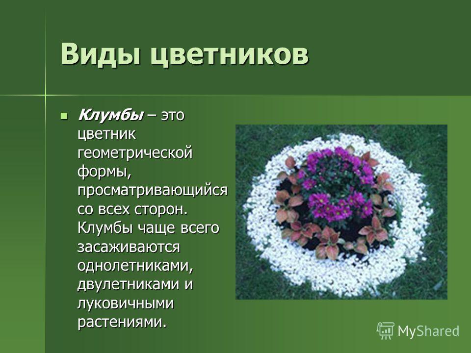 Виды цветников Клумбы – это цветник геометрической формы, просматривающийся со всех сторон. Клумбы чаще всего засаживаются однолетниками, двулетниками и луковичными растениями. Клумбы – это цветник геометрической формы, просматривающийся со всех стор