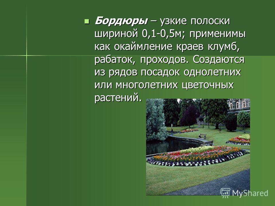 Бордюры – узкие полоски шириной 0,1-0,5м; применимы как окаймление краев клумб, рабаток, проходов. Создаются из рядов посадок однолетних или многолетних цветочных растений. Бордюры – узкие полоски шириной 0,1-0,5м; применимы как окаймление краев клум