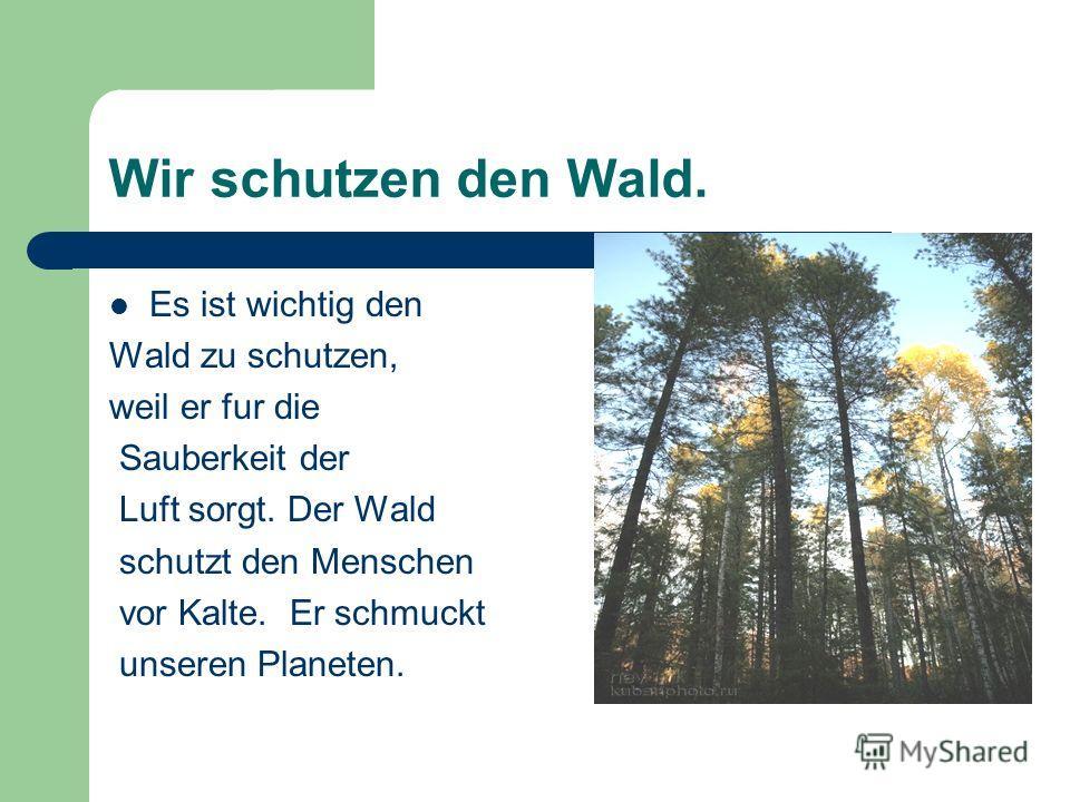 Wir schutzen den Wald. Es ist wichtig den Wald zu schutzen, weil er fur die Sauberkeit der Luft sorgt. Der Wald schutzt den Menschen vor Kalte. Er schmuckt unseren Planeten.