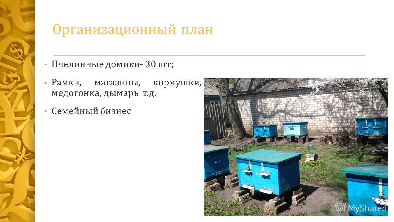 Организационный план Пчелинные домики- 30 шт; Рамки, магазины, кормушки, медогонка, дымарь т.д. Семейный бизнес