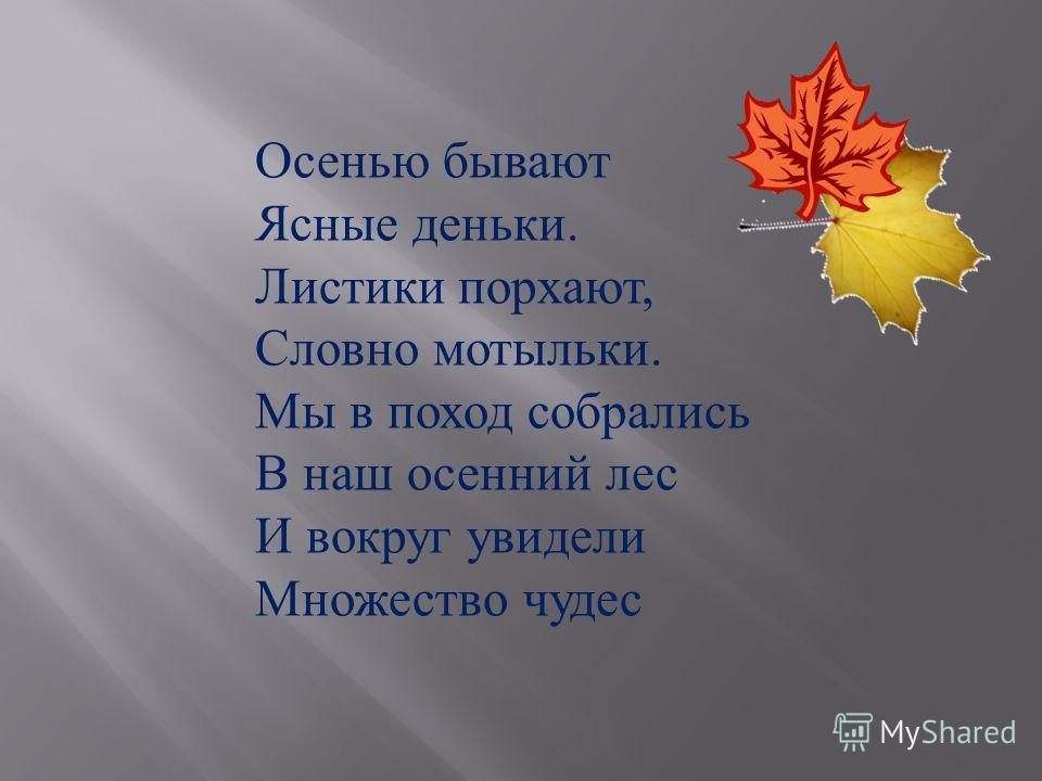 Осенью бывают Ясные деньки. Листики порхают, Словно мотыльки. Мы в поход собрались В наш осенний лес И вокруг увидели Множество чудес
