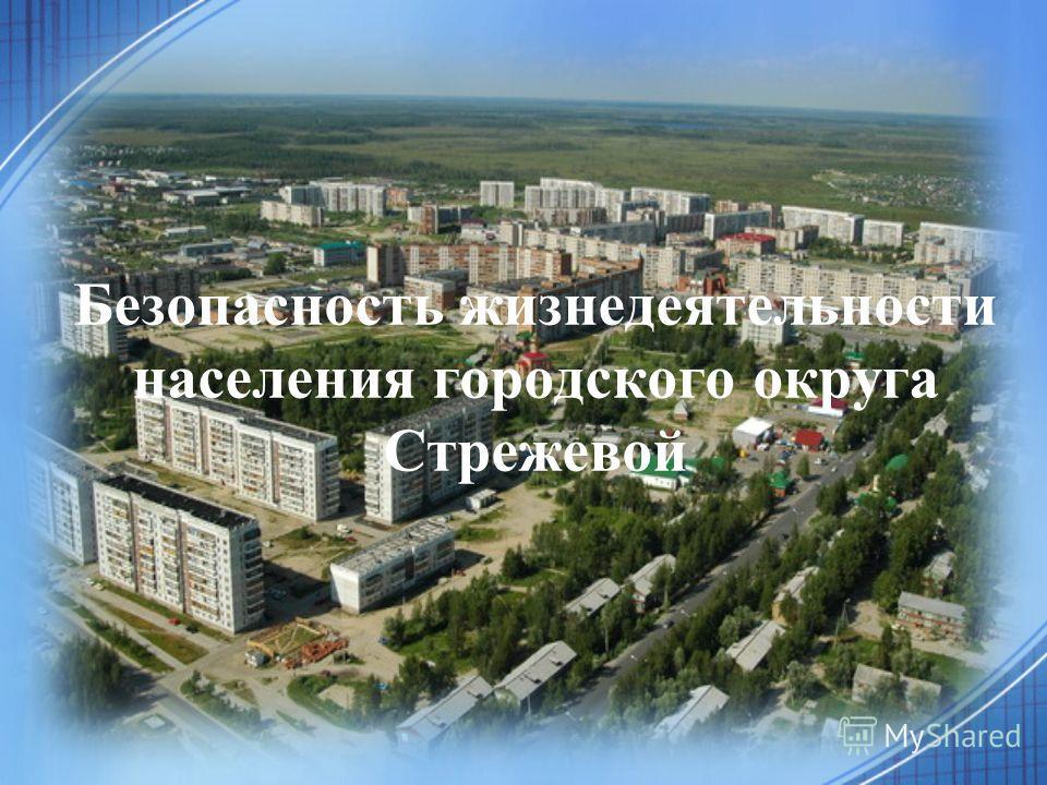 Безопасность жизнедеятельности населения городского округа Стрежевой