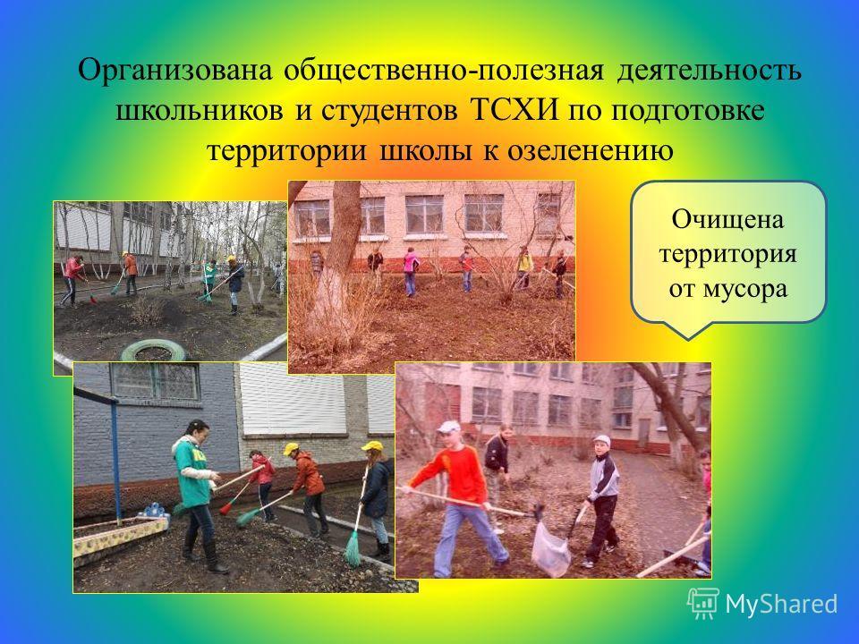 Организована общественно-полезная деятельность школьников и студентов ТСХИ по подготовке территории школы к озеленению Очищена территория от мусора