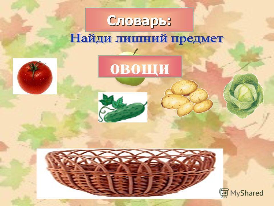 Словарь: овощи