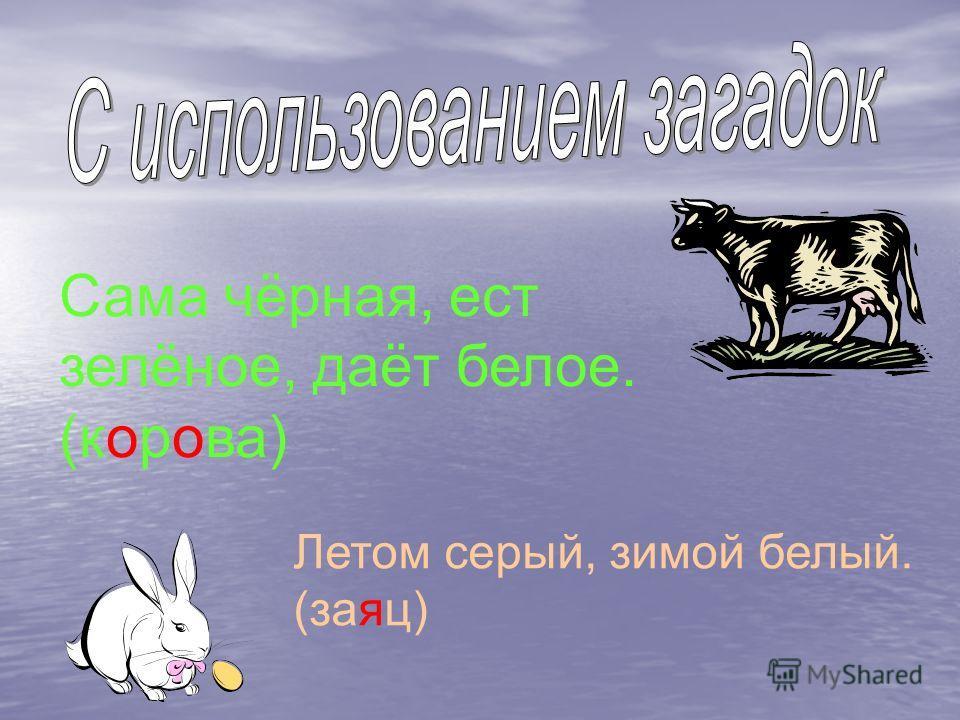 Сама чёрная, ест зелёное, даёт белое. (корова) Летом серый, зимой белый. (заяц)