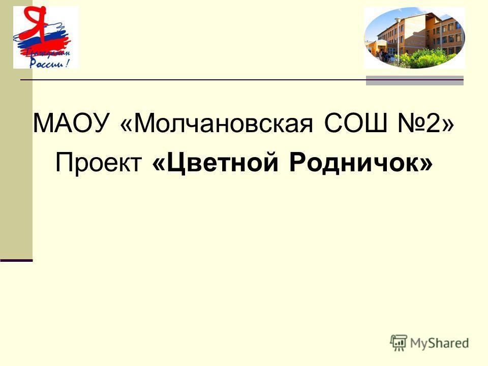 МАОУ «Молчановская СОШ 2» Проект «Цветной Родничок»
