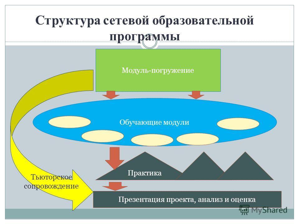 Структура сетевой образовательной программы Модуль-погружение Обучающие модули Практика Презентация проекта, анализ и оценка Тьюторское сопровождение