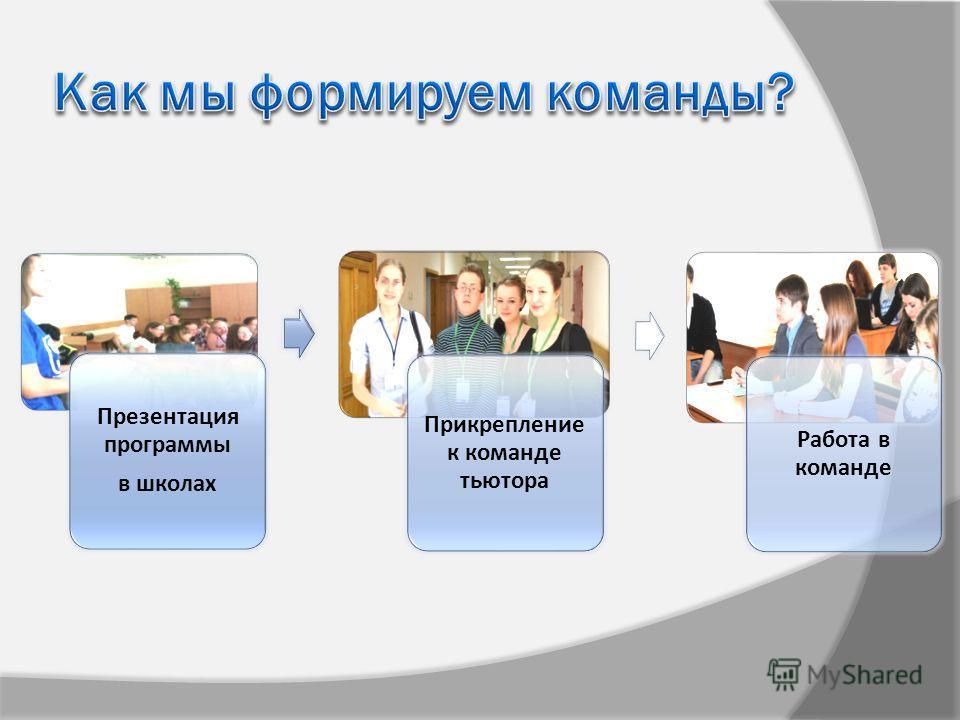 Презентация программы в школах Прикрепление к команде тьютора Работа в команде