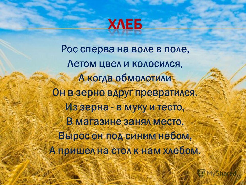 Рос сперва на воле в поле, Летом цвел и колосился, А когда обмолотили Он в зерно вдруг превратился. Из зерна - в муку и тесто, В магазине занял место. Вырос он под синим небом, А пришел на стол к нам хлебом.