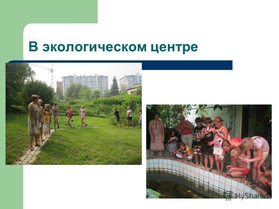 В экологическом центре
