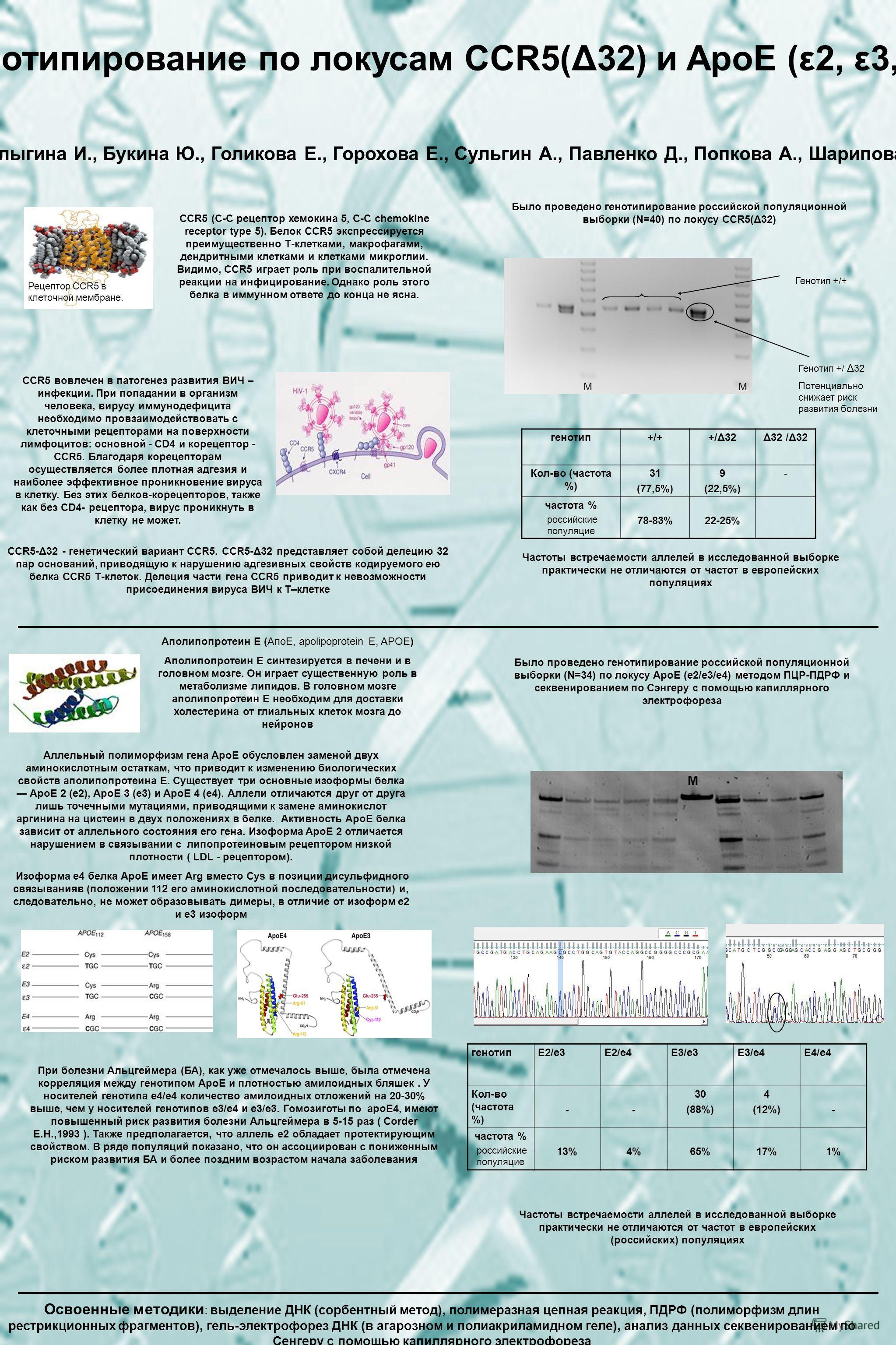 Генотипирование по локусам CCR5(Δ32) и ApoE (ε2, ε3, ε4) Балыгина И., Букина Ю., Голикова Е., Горохова Е., Сульгин А., Павленко Д., Попкова А., Шарипова Р. Рецептор CCR5 в клеточной мембране. CCR5 (C-C рецептор хемокина 5, C-C chemokine receptor type