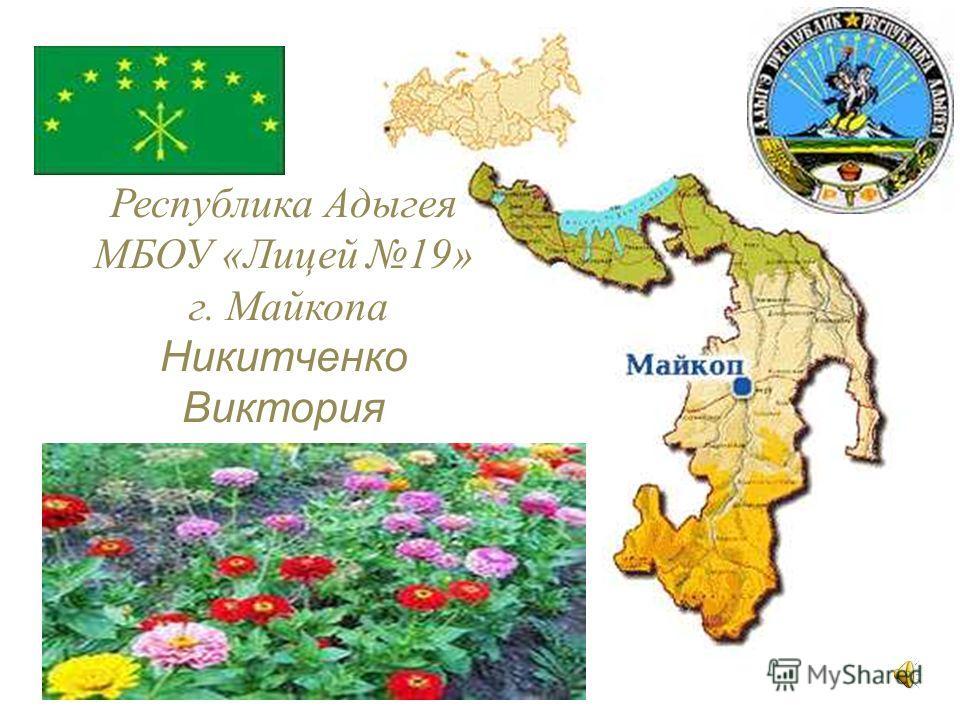 Республика Адыгея МБОУ «Лицей 19» г. Майкопа Никитченко Виктория