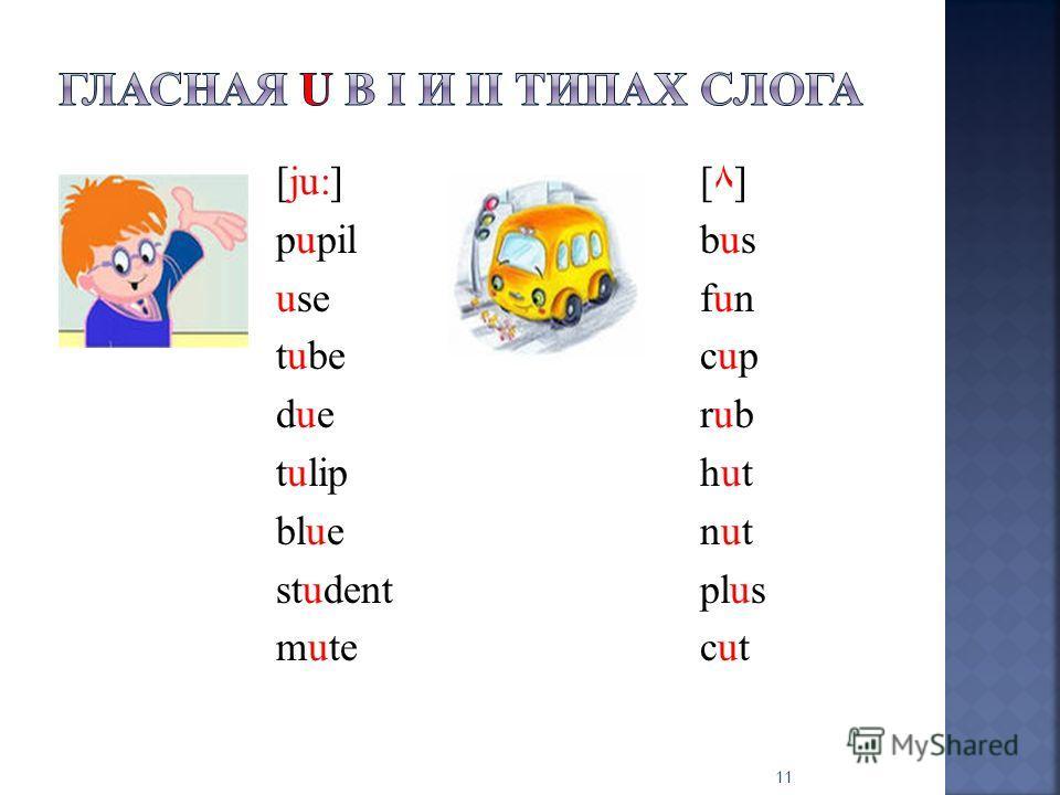 [јu:][٨] pupilbus usefun tubecup duerub tuliphut bluenut studentplus mutecut 11