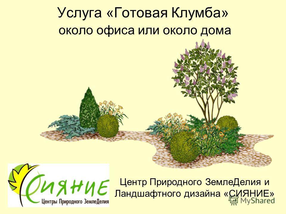 Услуга «Готовая Клумба» около офиса или около дома Центр Природного ЗемлеДелия и Ландшафтного дизайна «СИЯНИЕ»