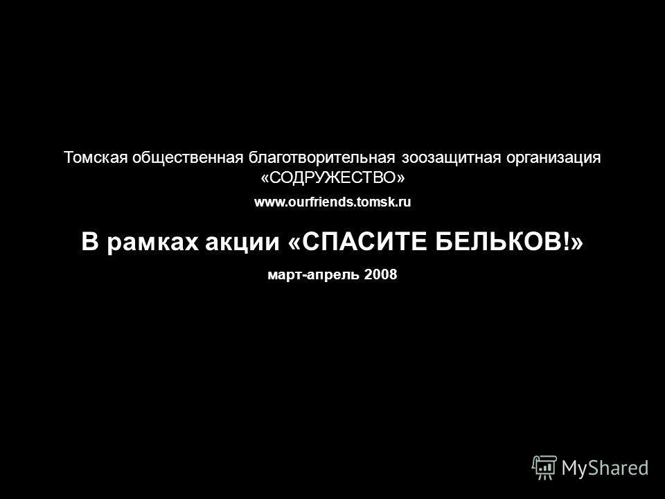 Томская общественная благотворительная зоозащитная организация «СОДРУЖЕСТВО» www.ourfriends.tomsk.ru В рамках акции «СПАСИТЕ БЕЛЬКОВ!» март-апрель 2008