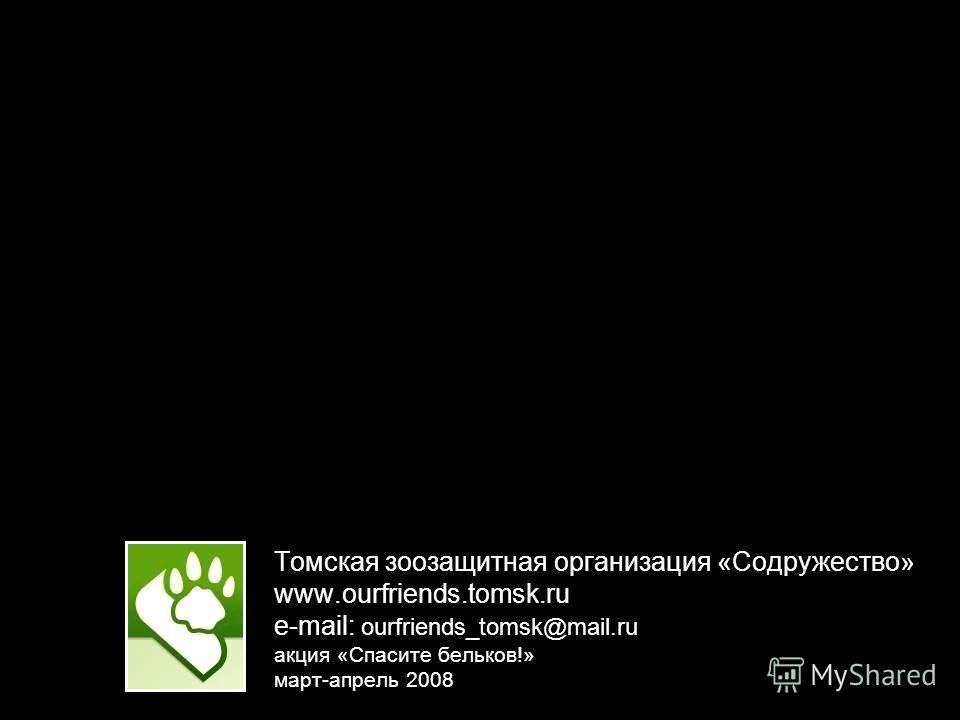 Томская зоозащитная организация «Содружество» www.ourfriends.tomsk.ru e-mail: ourfriends_tomsk@mail.ru акция «Спасите бельков!» март-апрель 2008
