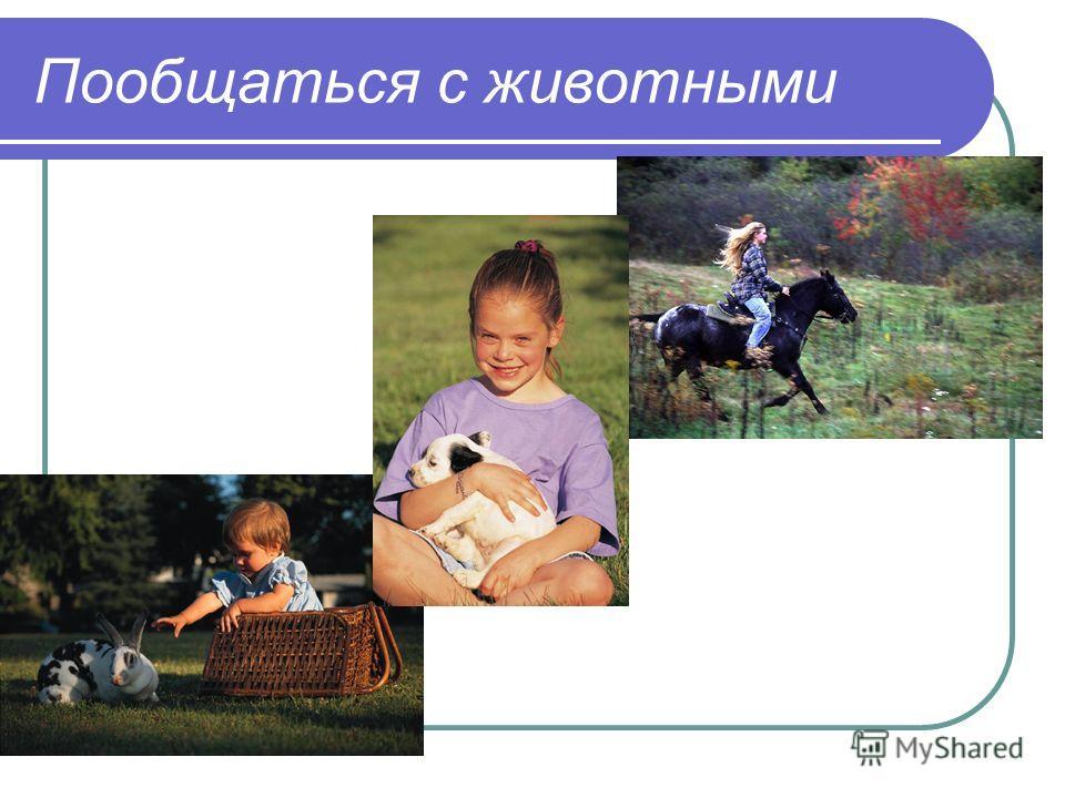 Пообщаться с животными