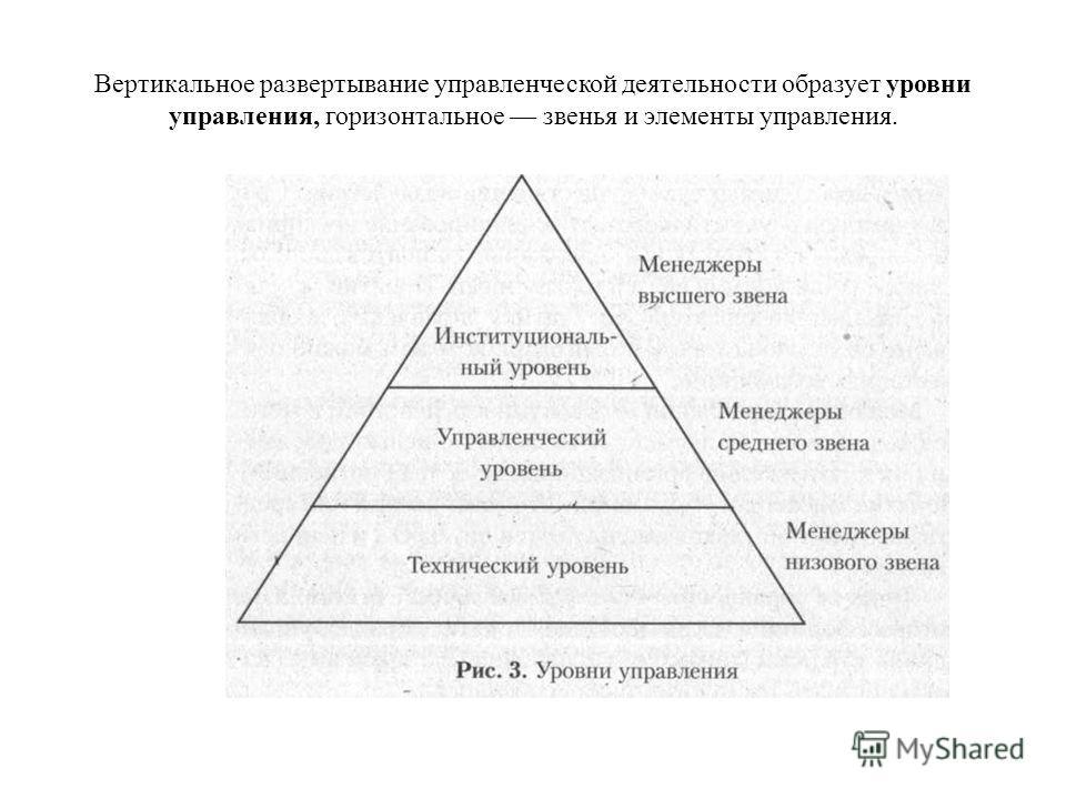 Вертикальное развертывание управленческой деятельности образует уровни управления, горизонтальное звенья и элементы управления.