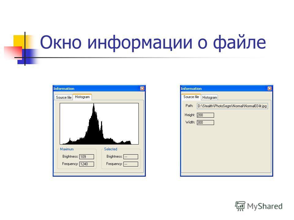Окно информации о файле