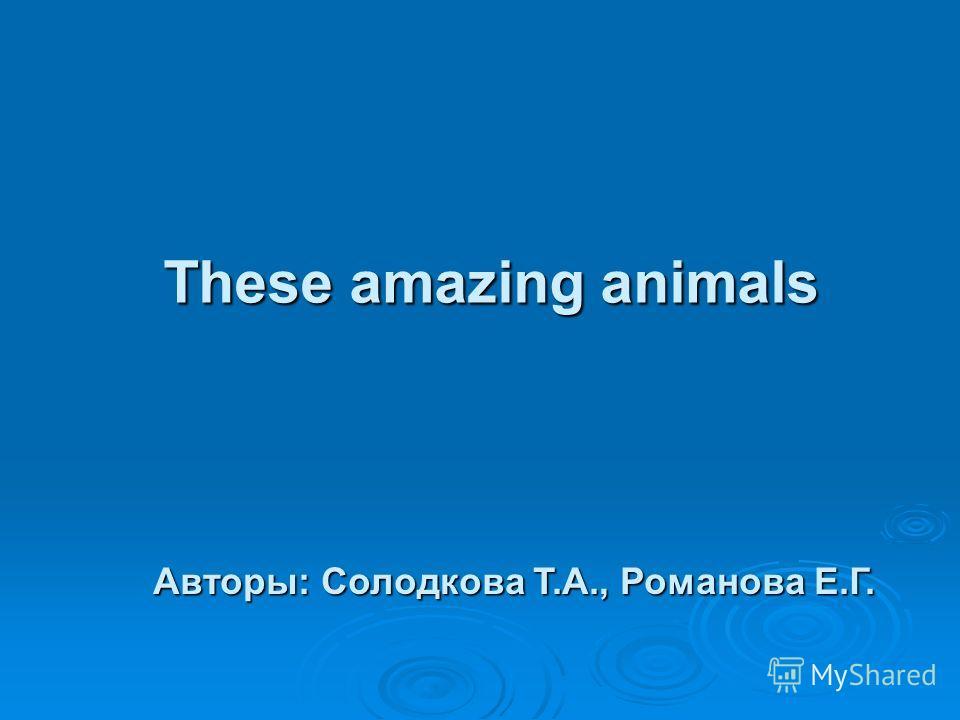 These amazing animals Авторы: Солодкова Т.А., Романова Е.Г.