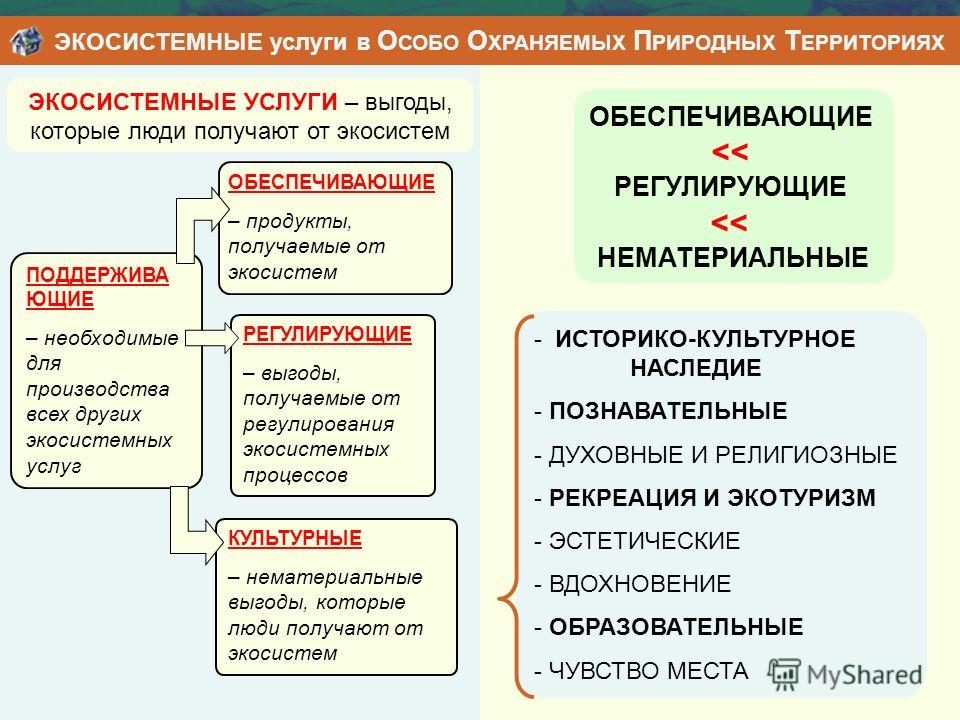 ЭКОСИСТЕМНЫЕ УСЛУГИ – выгоды, которые люди получают от экосистем - ИСТОРИКО-КУЛЬТУРНОЕ НАСЛЕДИЕ - ПОЗНАВАТЕЛЬНЫЕ - ДУХОВНЫЕ И РЕЛИГИОЗНЫЕ - РЕКРЕАЦИЯ И ЭКОТУРИЗМ - ЭСТЕТИЧЕСКИЕ - ВДОХНОВЕНИЕ - ОБРАЗОВАТЕЛЬНЫЕ - ЧУВСТВО МЕСТА ОБЕСПЕЧИВАЮЩИЕ
