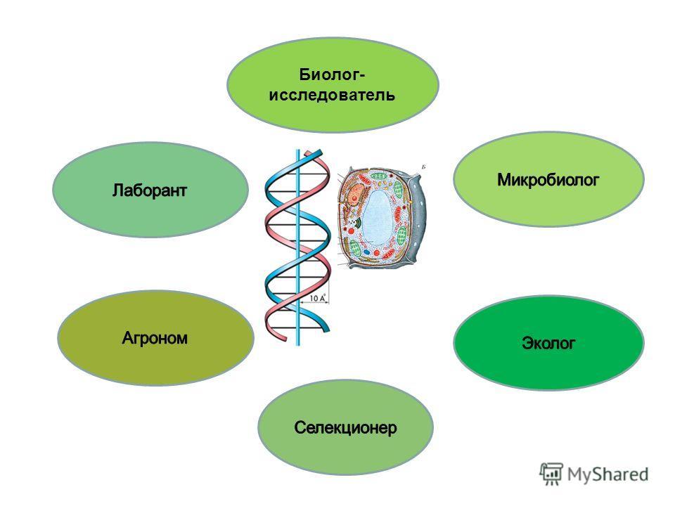 Биолог- исследователь