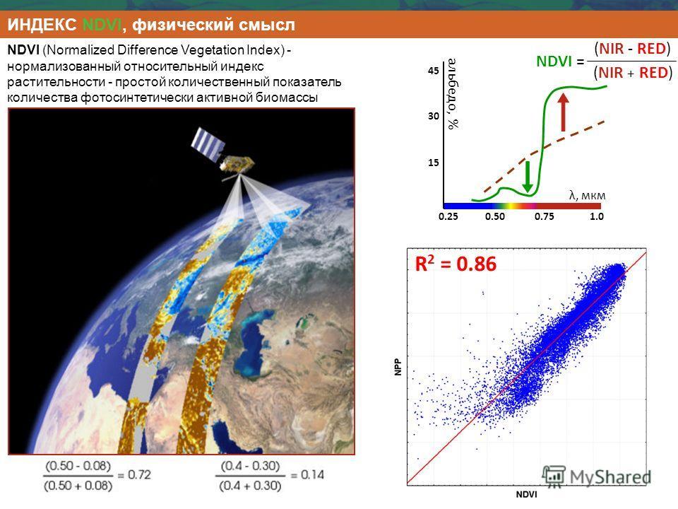 ИНДЕКС NDVI, физический смысл NDVI (Normalized Difference Vegetation Index) - нормализованный относительный индекс растительности - простой количественный показатель количества фотосинтетически активной биомассы 0.250.500.751.0 15 30 45 альбедо, % λ,