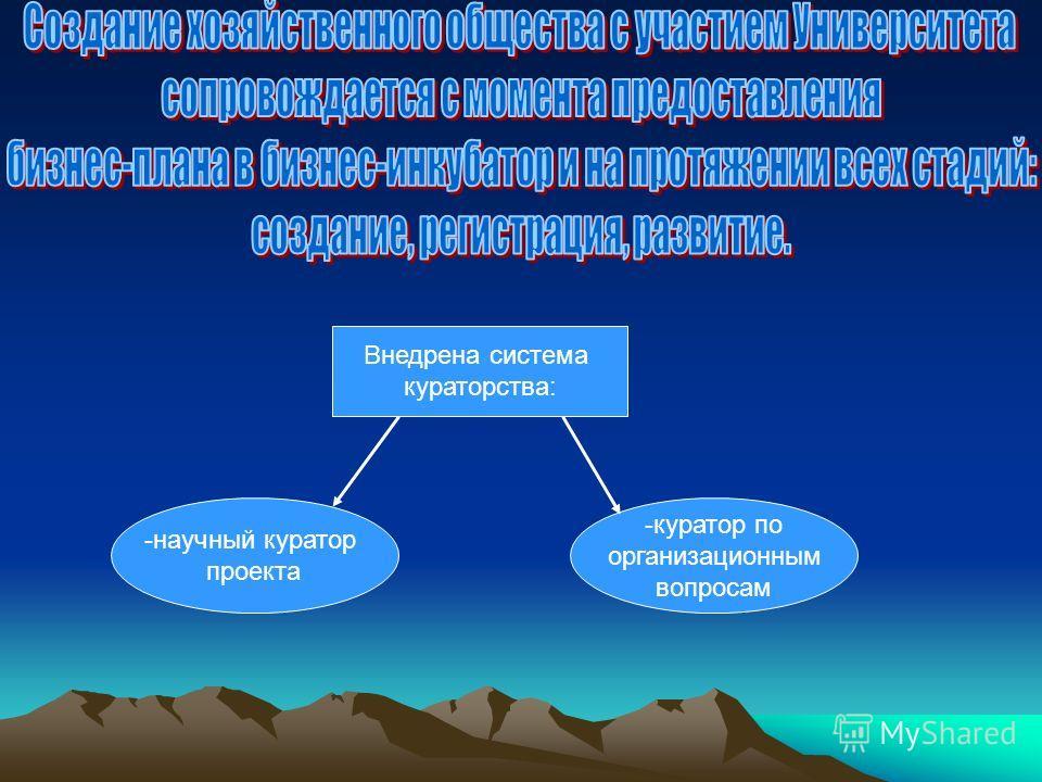 -научный куратор проекта -куратор по организационным вопросам Внедрена система кураторства: