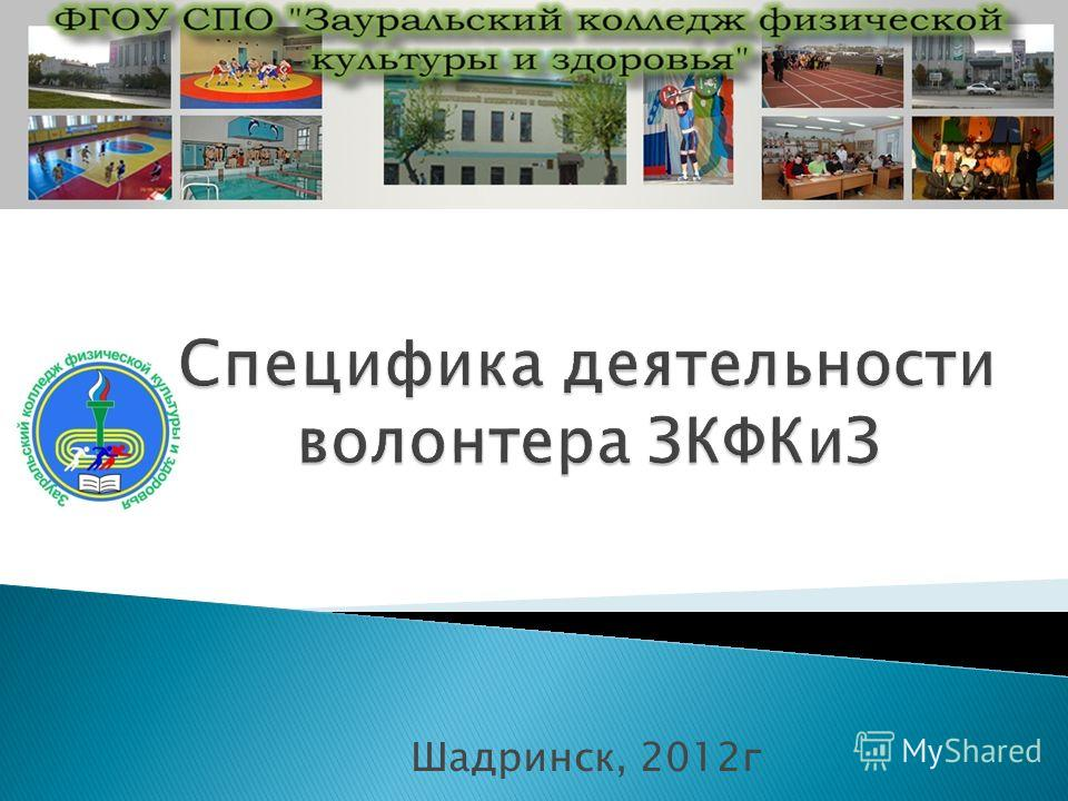 Шадринск, 2012г