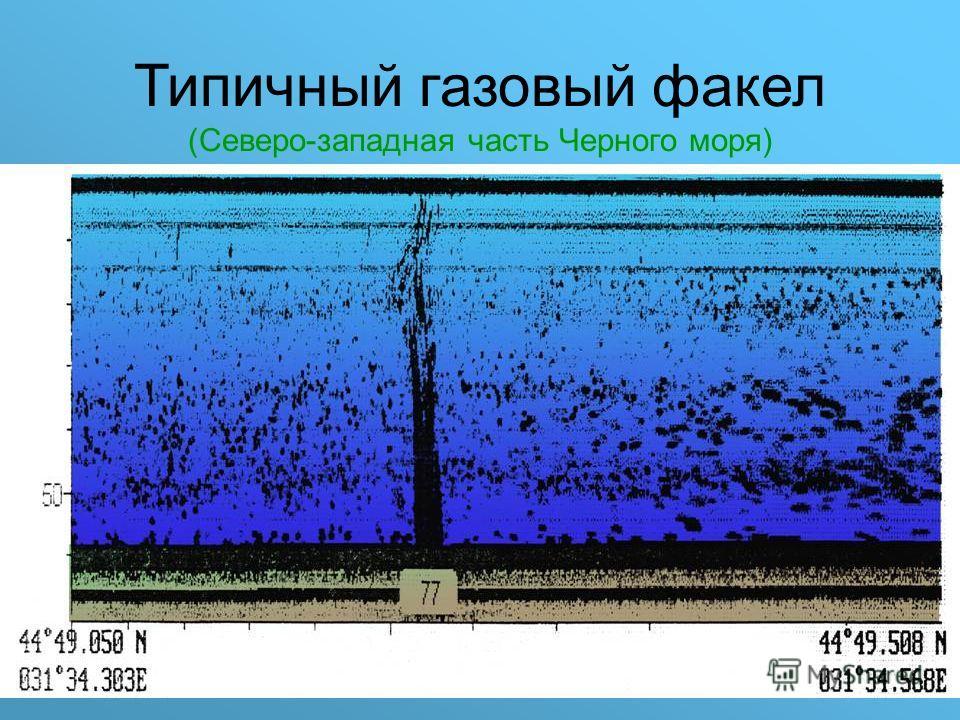 Типичный газовый факел (Северо-западная часть Черного моря)