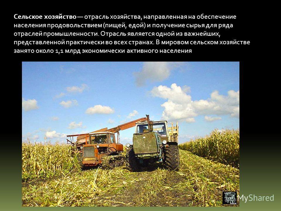 Сельское хозяйство отрасль хозяйства, направленная на обеспечение населения продовольствием (пищей, едой) и получение сырья для ряда отраслей промышленности. Отрасль является одной из важнейших, представленной практически во всех странах. В мировом с