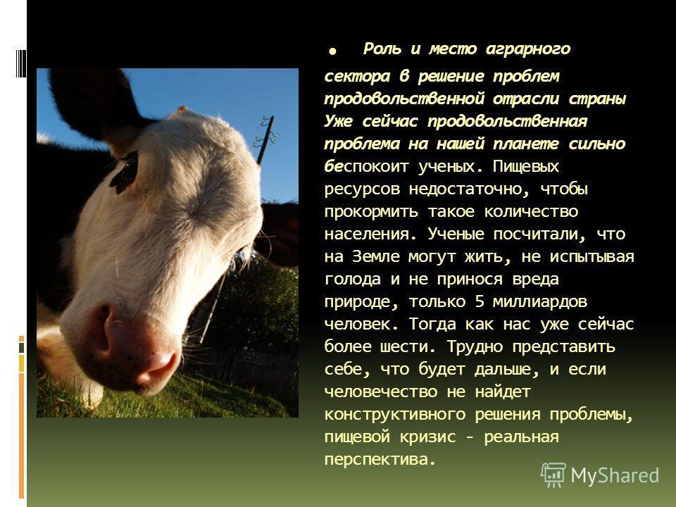 . Роль и место аграрного сектора в решение проблем продовольственной отрасли страны Уже сейчас продовольственная проблема на нашей планете сильно беспокоит ученых. Пищевых ресурсов недостаточно, чтобы прокормить такое количество населения. Ученые пос