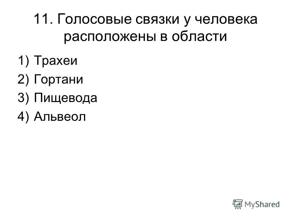 11. Голосовые связки у человека расположены в области 1)Трахеи 2)Гортани 3)Пищевода 4)Альвеол