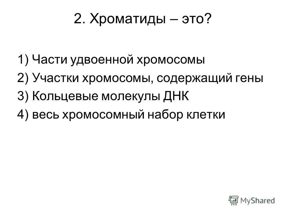 2. Хроматиды – это? 1) Части удвоенной хромосомы 2) Участки хромосомы, содержащий гены 3) Кольцевые молекулы ДНК 4) весь хромосомный набор клетки