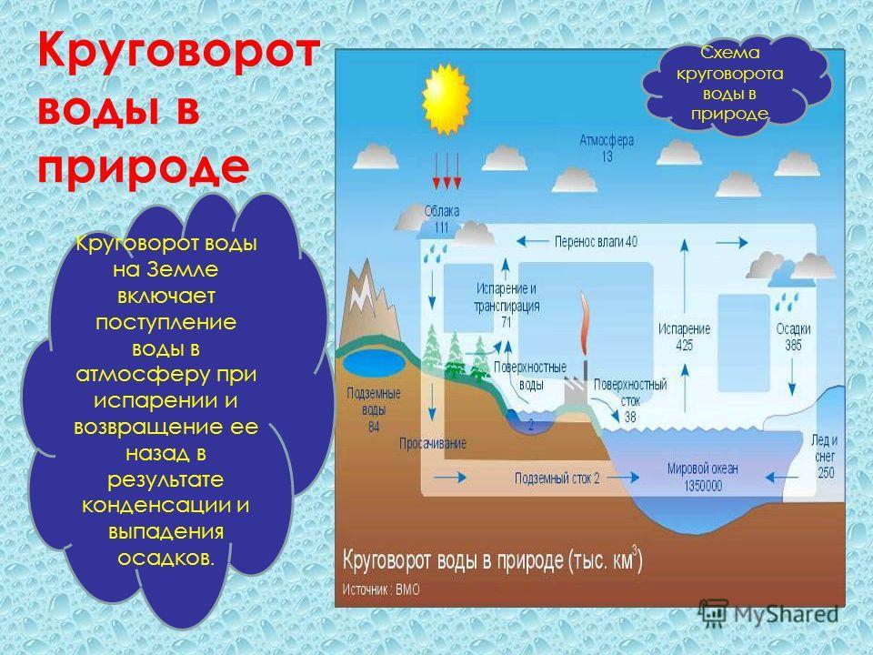 Значение воды в природе схема фото 760