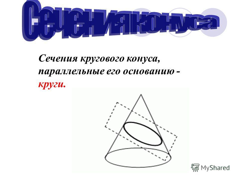Сечения кругового конуса, параллельные его основанию - круги.