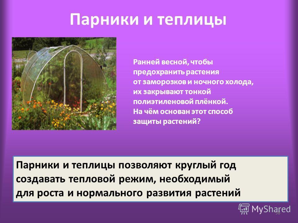 Парники и теплицы 38 Ранней весной, чтобы предохранить растения от заморозков и ночного холода, их закрывают тонкой полиэтиленовой плёнкой. На чём основан этот способ защиты растений? Парники и теплицы позволяют круглый год создавать тепловой режим,
