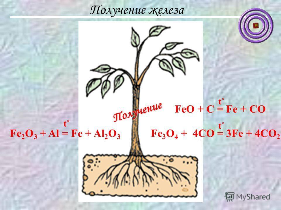 Получение железа FeO + C = Fe + CO t˚t˚ Fe 3 O 4 + 4CO = 3Fe + 4CO 2 t˚t˚ Fe 2 O 3 + Al = Fe + Al 2 O 3 t˚t˚ Получение